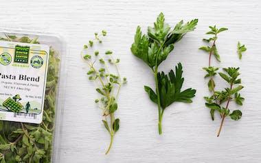 Organic Pasta Herb Blend