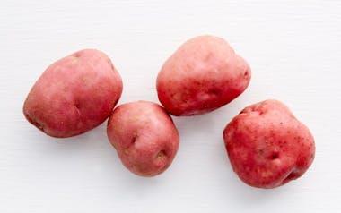 Organic Red Norland Potatoes
