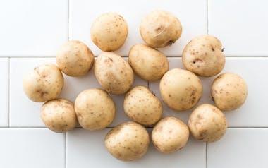 Organic Baby Nicola Potatoes