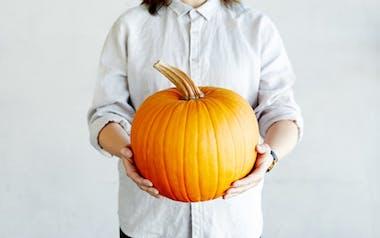 Organic Large Jack O' Lantern Pumpkin