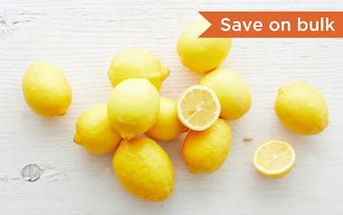 Bulk Organic Lisbon Lemons