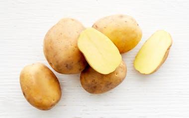 Organic Dry-Farmed Satina Potatoes