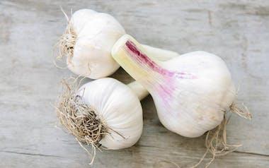 Organic Fresh Clipped Garlic
