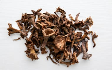 Foraged Black Trumpet Mushrooms