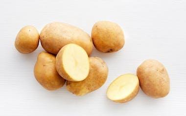 Organic Yellow Finn Potatoes