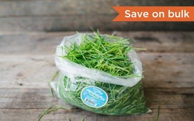 Organic Cut Wheatgrass Bulk