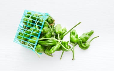 Organic Padron Peppers