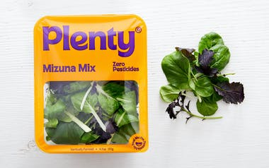 Mizuna Mix Asian Greens Blend