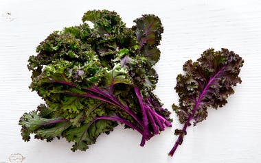 Organic Red Curly Kale