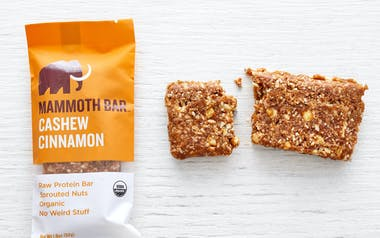 Organic Raw Cashew Cinnamon Protein Bar