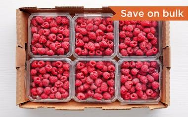 Flat of Organic Raspberries (Mexico)