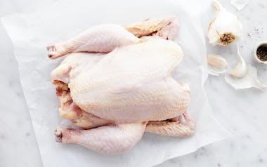 Pastured Ranger Whole Chicken