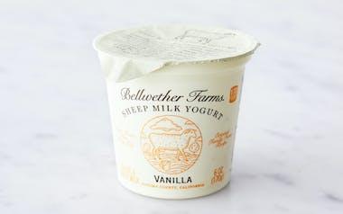 Vanilla Sheep's Milk Yogurt