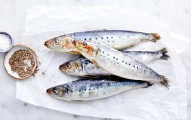 Wild Monterey Whole Sardines (Frozen)