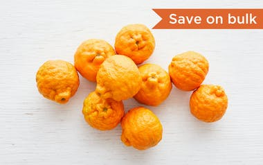 Bulk Organic Large Pixie Tangerines