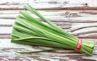 Organic Garlic Chives