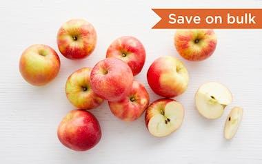 Bulk Organic & Biodynamic Honeycrisp Apples