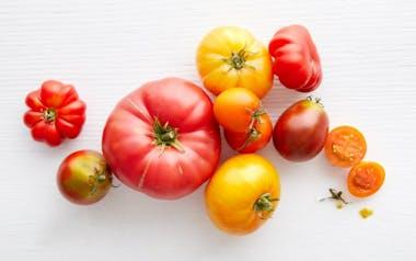 Bulk Organic Mixed Heirloom Tomatoes