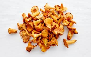 Foraged Yellow Chanterelle Mushrooms