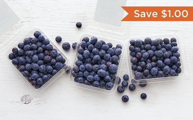 Organic Blueberry 3-Pack