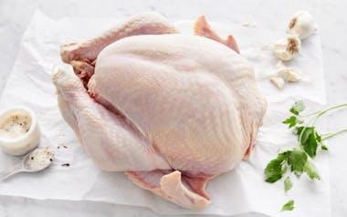 Organic Broad Breasted Turkey (16-18 lb)