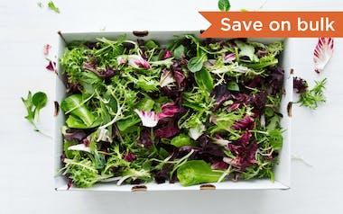Bulk Pre-Washed Organic Salad Mix