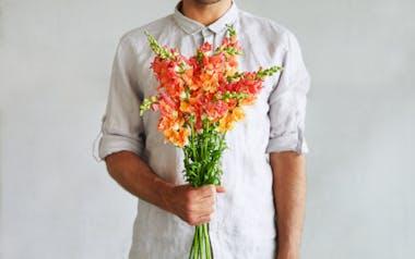 Florist's Choice Snapdragons