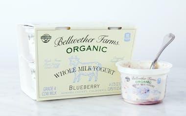 Organic Blueberry Whole Milk Yogurt Cups
