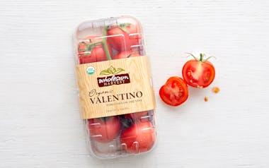 Organic & Fair Trade On-the-Vine Valentino Tomatoes (Mexico)