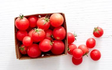 Organic Sweet Treat Cherry Tomatoes