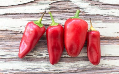 Organic Red Fresno Chile Peppers