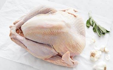 Heritage Turkey (8-10 lb)