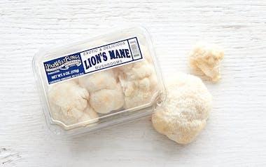 Fresh Organic Lion's Mane Mushrooms