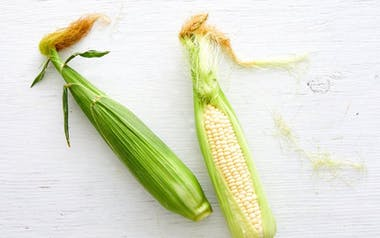 Organic Sweet White Corn Duo