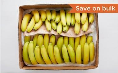 Case of Organic & Fair Trade Bananas (Ecuador)