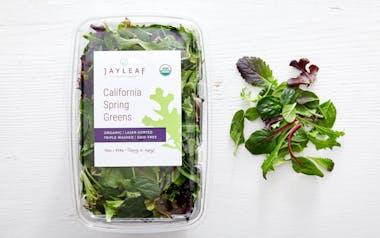 Pre-Washed Organic Salad Mix