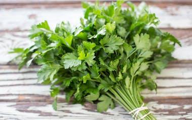 Organic Italian Flatleaf Parsley