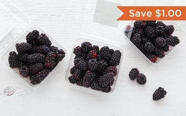 Organic Blackberry 3-Pack (Mexico)