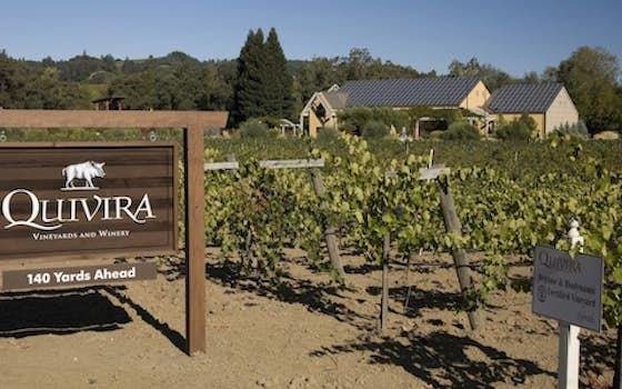 Quivira Wine