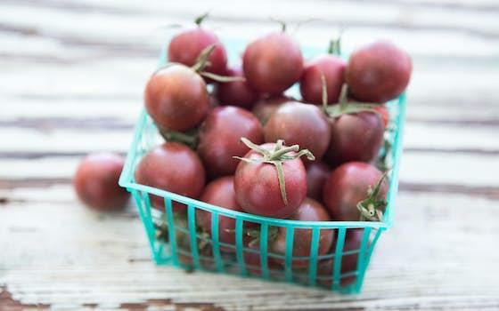 Durst Organic Growers