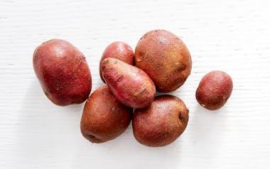 Organic Crimson King Potatoes