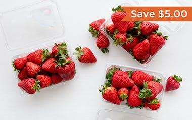 Harry's Berries Organic Gaviota Strawberry Trio