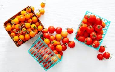 Organic Cherry Tomato 3-Pack
