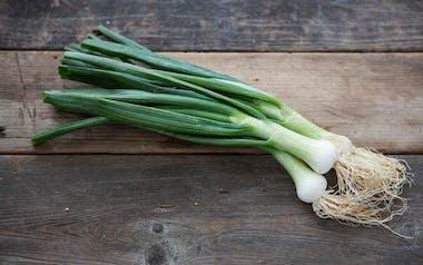 Organic White Cipollini Spring Onions