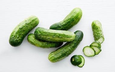 Organic Pickling Cucumbers