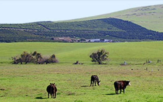 Deer Creek Heights Ranch