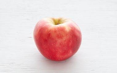 Organic & Biodynamic Small Honeycrisp Apple