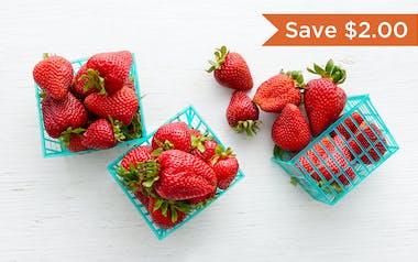 Organic Albion Strawberry 3-Pack