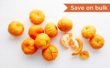 Bulk Organic Seedless Golden Nugget Mandarins