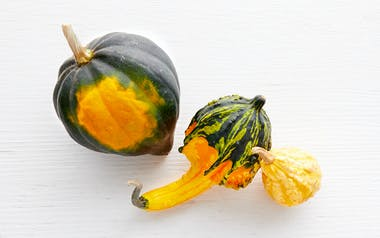 Decorative Gourd Mix